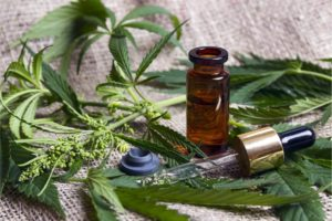 Does CBD Oil Build Up in Your System?